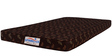Economical 4 Inches Coir Mattress in Multicolour by Springtek Ortho Coir