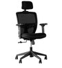 Aspire High Back Ergonomic Chair in Black Colour by HomeTown