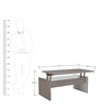 Chi Chi Multifunctional Coffee Table with Storage in Grey Colour by Gravity
