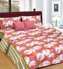 Cortina White & Pink Satin Gold Floral 100 x 90 Inch Double Bed Sheet (with Pillow Covers)