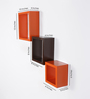 Calliope Set Of 3 Wall Shelve in Orange & Brown by CasaCraft