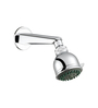 ESSESS by Asian Paints Silver Brass Overhead Shower 3 Flow with Shower Arm