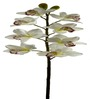 Fourwalls Polyethylene Artificial Yellow Orchid Flower - Set of 2