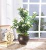 Fourwalls Multicolour Fabric Premium Range Morning Glory Flowers with Vase