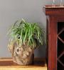 Gaia Woodlike planter - Tree Branch