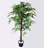 Ginni Bloom Green PVC & Synthetic Artificial Fine Green Maple Tree