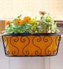 Green Gardenia Railing Window Box with Yellow Planter