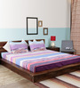Home Creation Multicolor Polyester Double Bed Sheet Set (with Pillow Covers)