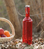 Luigi Bormioli Hydrosommelier Red Bottle 1000 ML with Hermetic Inox-Cap