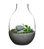Nude Grey Glass Terrarium Vase