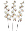 Pollination White Butterfly Orchid Artificial Flowers - Set of 3