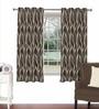 Skipper Brown Viscose & Polyester 44 x 60 Inch Eyelet Window Curtain (Model No: 092634)