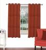 Skipper Maroon Viscose & Polyester 44 x 60 Inch Eyelet Window Curtain (Model No: 093105)
