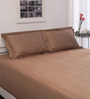 Spaces Brown Solids Cotton Queen Size Bed Sheets - Set of 3