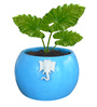 Yaanai Planter in Blue Colour by Greymode